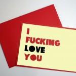 Saint Valentin - I fucking love you